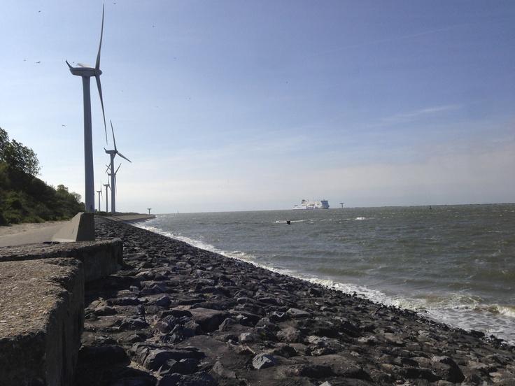 Windmoles at the coastline at the 2nd Maasvlakte