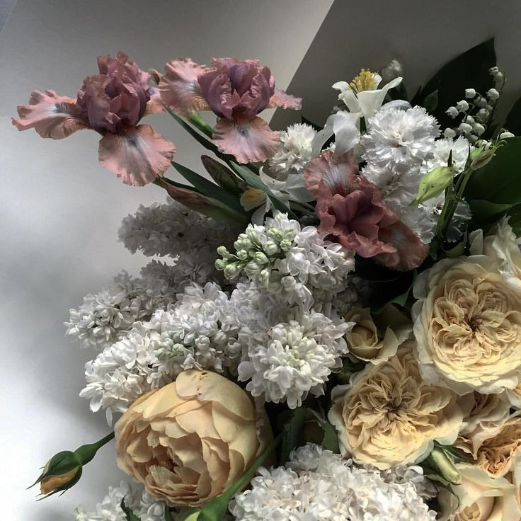 Muted colours, flowers by Lisa Cooper, Sydney