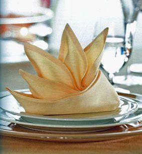 Libros de cocina y gastronomía: Curso de doblar servilletas paso a paso