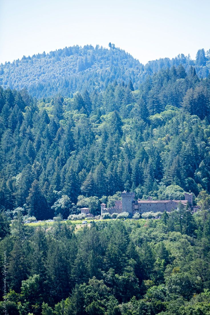 Castello di Amorosa from Sterling Vineyards - View more photos on stylishlyme.com