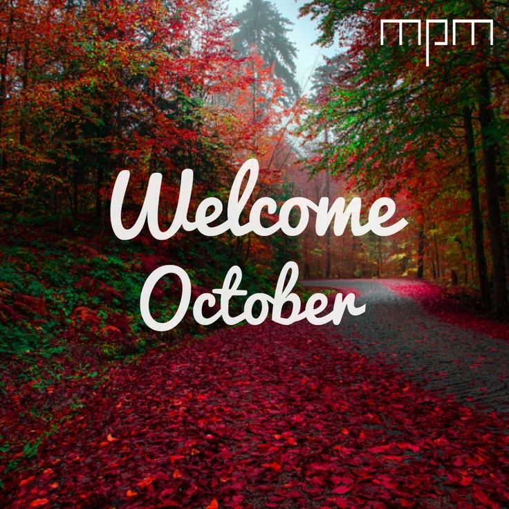 ¡Toda la buena energía para este nuevo mes! #welcomeoctober #october #happiness