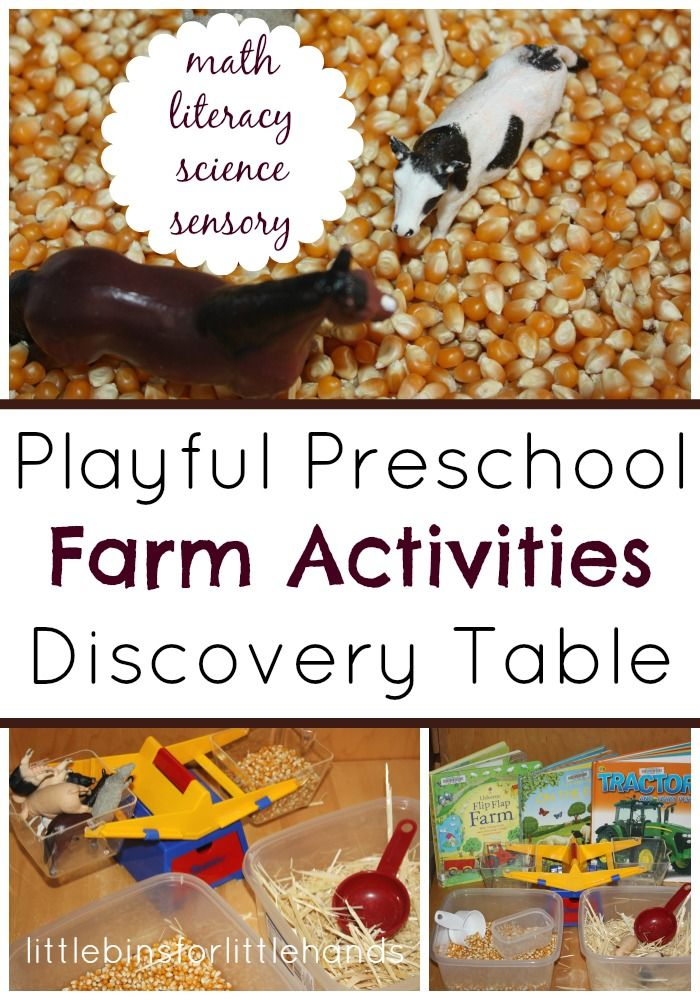 Preschool Farm Activities And Sensory Play Ideas For Math