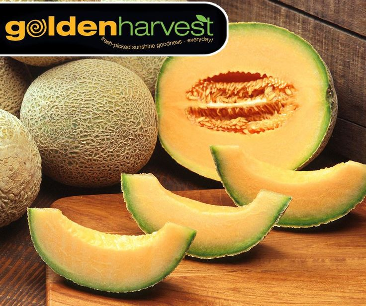 November 11 ·   #DidYouKnow that cantaloupes are a rich source of dietary fibers, vitamins A, C, vitamins of the B group and minerals such as calcium, iron, magnesium, phosphorus and potassium. Visit #GoldenHarvest Convenience Centre or the #EdenMeanderLifestyleCentre for savings on selected products this weekend. For all the specials, click here: http://ablog.link/cbu. Prices valid from 10 – 13 November 2016. T's & C's apply, E&OE.