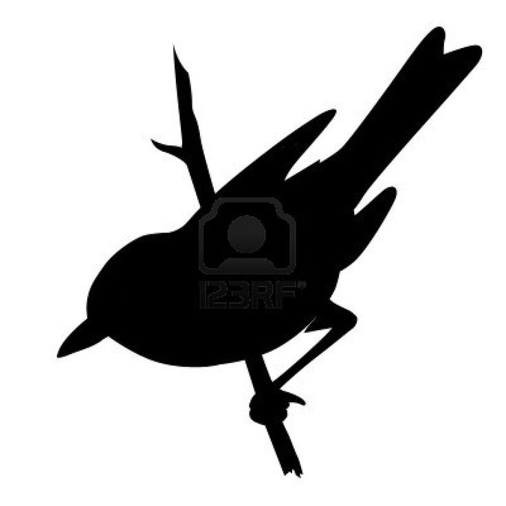 vector bird silhouette on white background, vector illustration Stock Photo