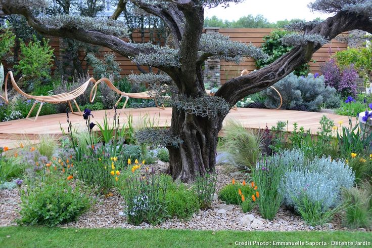 25 best au jardin images on pinterest backyard ideas cuttings and garden art. Black Bedroom Furniture Sets. Home Design Ideas