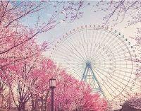 Dissertando Com Tempo: Acredite em você: A Roda Gigante
