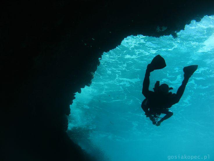 diver, Red Sea gosiakopec.pl