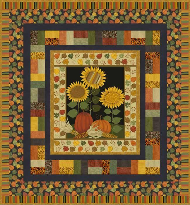 17 Best Images About Kim Schaefer Author Quilter Fabric