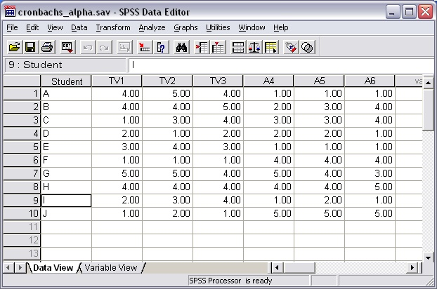 Cronbach's Alpha with SPSS