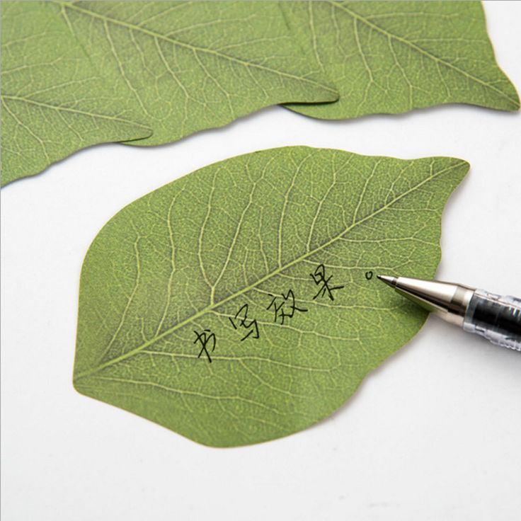 Cute Kawaii Memo Pad Creative Leaf Post It Note For Kids Gift Novelty Item Korean Stationery Free Shipping 382 #>=#>=#>=#>=#> Click on the pin to check out discount price, color, size, shipping, etc. Save and like it!