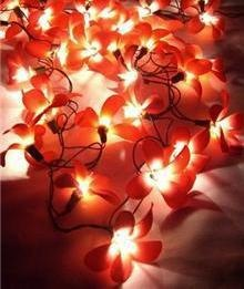 Orchid Garland Lights