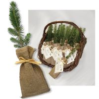 Promotional Trees , put in jars with rocks cool wedding favors :-D