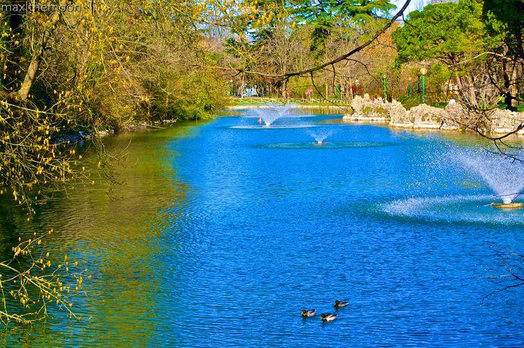 Blue - Giardini Margherita