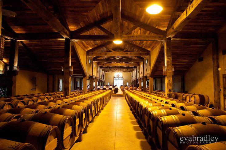 Church Road Winery wedding by Eva Bradley, Hawkes Bay wedding photographer www.evabradley.co.nz