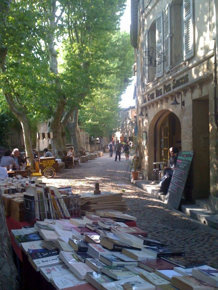 Avignon, France ~ Rue Des Teinturiers. Too too lovely. And look, books! I'd love to go.