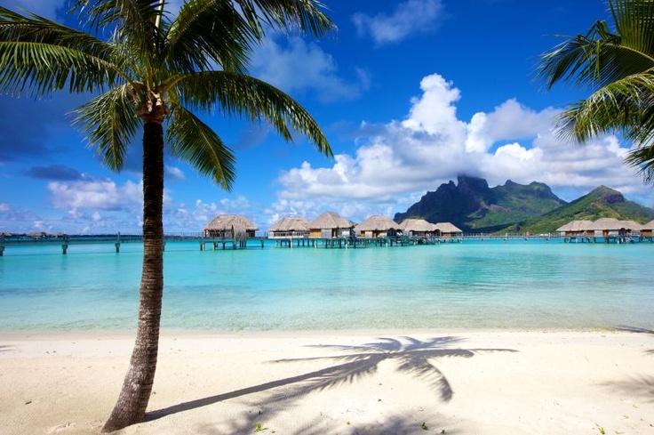 #Bora Bora - Die tropische Destination in Französisch-Polynesien ist besonders für Spaß- und Abenteuerlustige das perfekte Ziel. An den weißen Sandstränden und bei schönen Sonnenuntergängen lassen sich ein paar romantische Stunden verbringen.