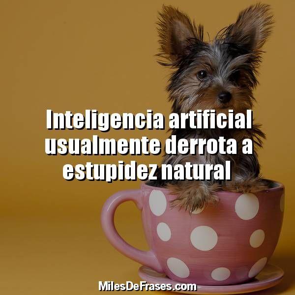 Inteligencia artificial usualmente derrota a estupidez natural