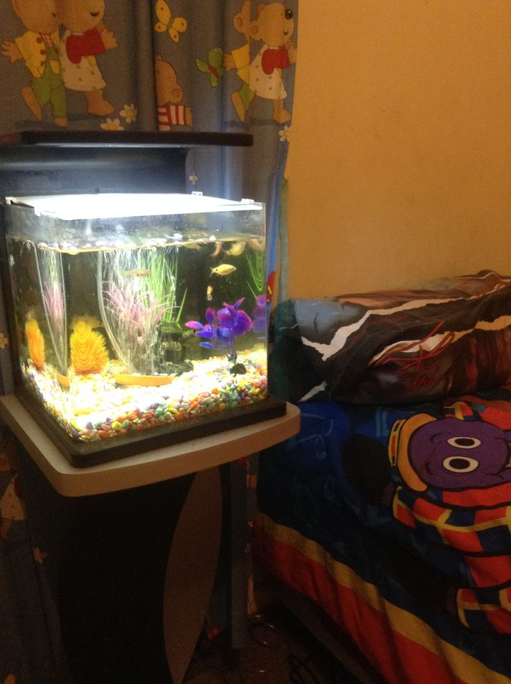 I thought I would try this idea for Jacob and it worked a treat to help him sleep. He likes the sound of the running water and watching the air bubbles and fish swimming around.