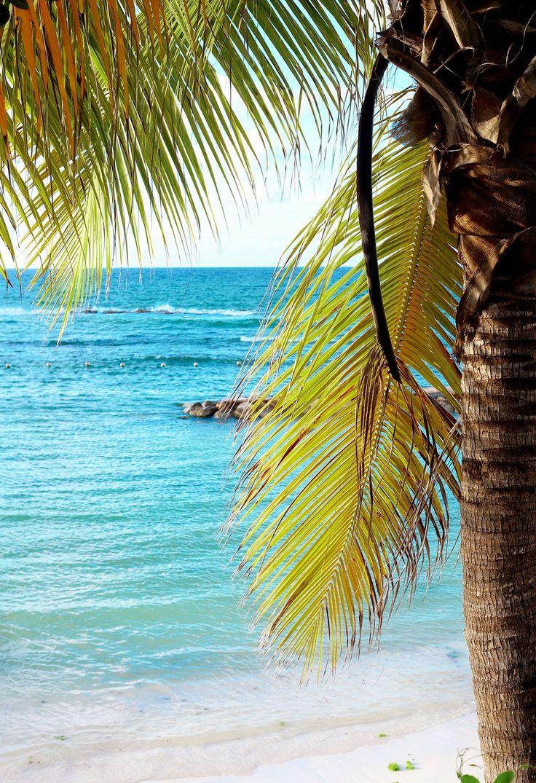 Grand Palladium Lady Hamilton Resort & Spa in Jamaica for a honeymoon and wedding destination #PalladiumWithLove