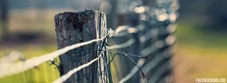 Media global Information Entertainment Forex Trade : barbwire-fence-photography-fb-cover
