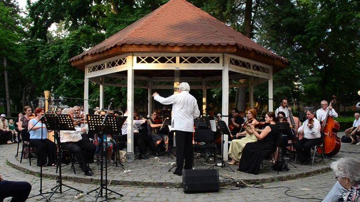 Concert vienez in Parcul Regina Maria