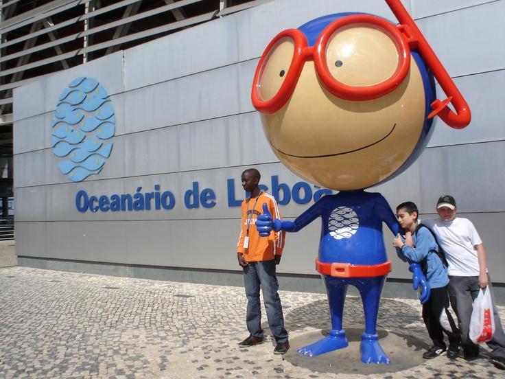 lisbon oceanarium lisbon portugal  http://www.business-class-flight.co.uk/tickets/portugal/
