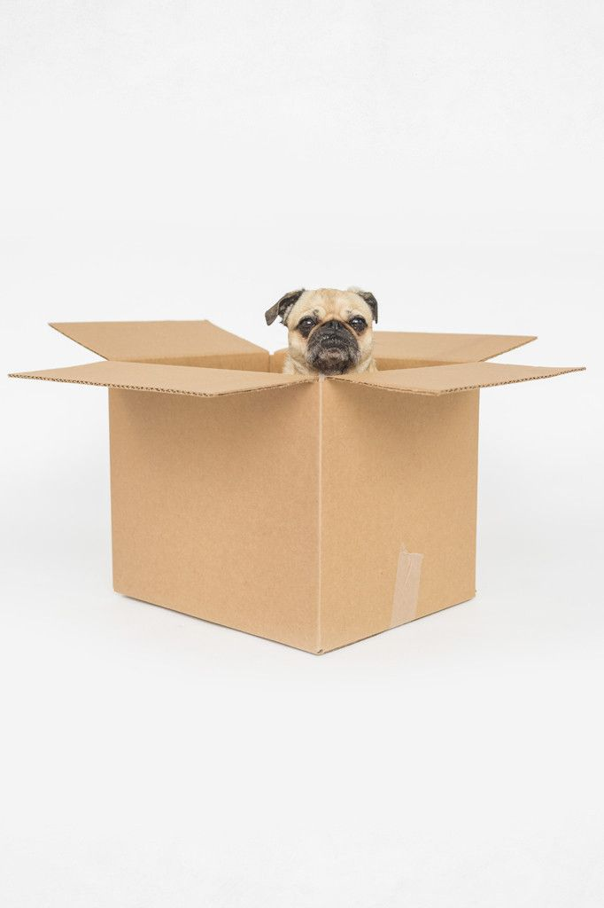 "Brown Corrugated Box/ 15"" x 12"" x 12"" (50 boxes)"