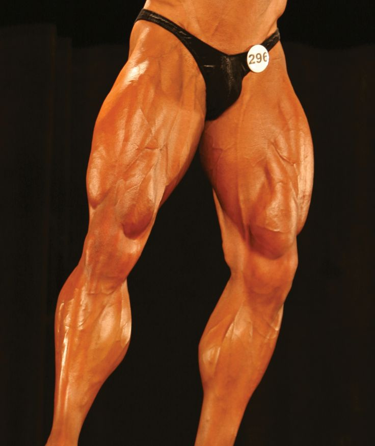 legs2.gif (1356×1612)   muscle   Pinterest   Anatomy and ...