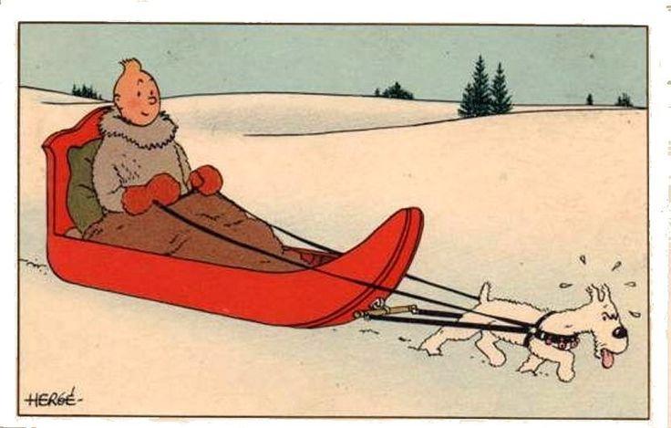 Tintin and Snowy // tintin looks so cosy!