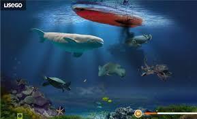 okyanus biyomu ile ilgili görsel sonucu