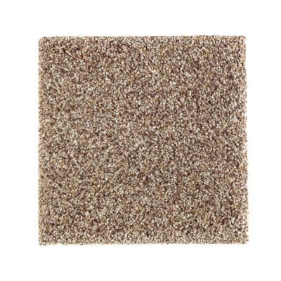 PetProof Sachet II – Color Eternity Texture 12 ft. Carpet-0645D-30-12 – The Home Depot