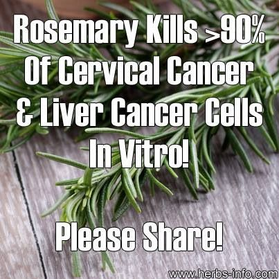 Use dry or fresh rosemary as an added seasoning to all charred/grilled/barbecued meats to enhance flavor and protect yourself from HCA's, carcinogens that are formed when meat gets charred and crusty.