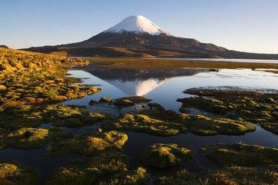 Volcán Llaima. En 1994 presentó su última erupción. Este volcán está en el Parque Nacional Conguillo, al sur de Chile.
