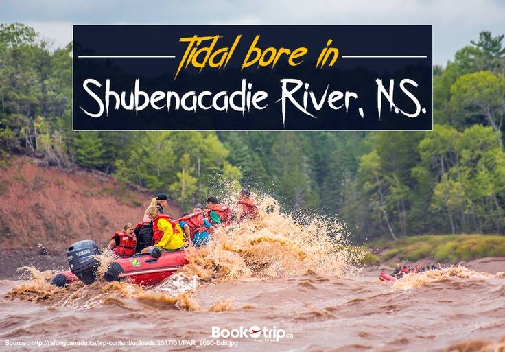 Adventure : Slip and slide your way down the smooth and slippery, muddy banks of the #Shubenacadie River. Call Us : (888) 379 1003 BookOtrip.ca #travelforless