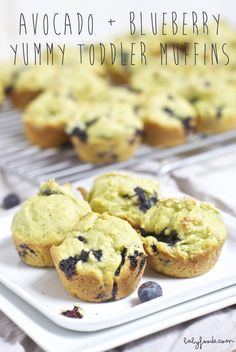 Avocado + Blueberry Yummy Toddler Mini Muffins are packed with nutritional goodness and are devoured by toddlers. #organictoddlerrecipe #toddlerrecipe babyfoode.com