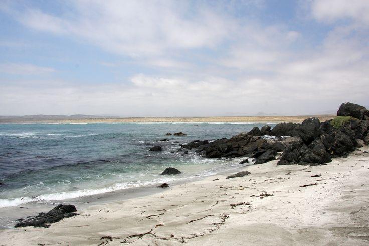 Punta de Choros, Chile   Explore sensaos photos on Flickr. s…   Flickr - Photo Sharing!