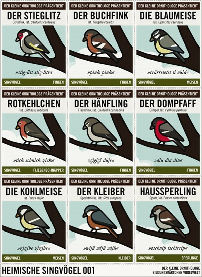 Birds, by Iris Luckhaus #information #instruction #illustration