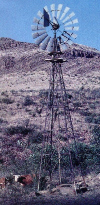 """Aermotor windmills pump water with wind power. I don't give a squat about how """"green"""" this is - I just like that aermotor windmills were so important in the history of Texas."""