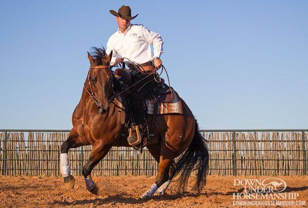 Downunder Horsemanship | Training Tip: Respect Requires Daily Maintenance