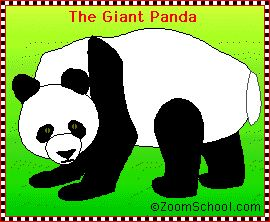 learning about pandas