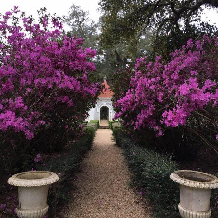 11 Amazing Louisiana Secrets You Never Knew