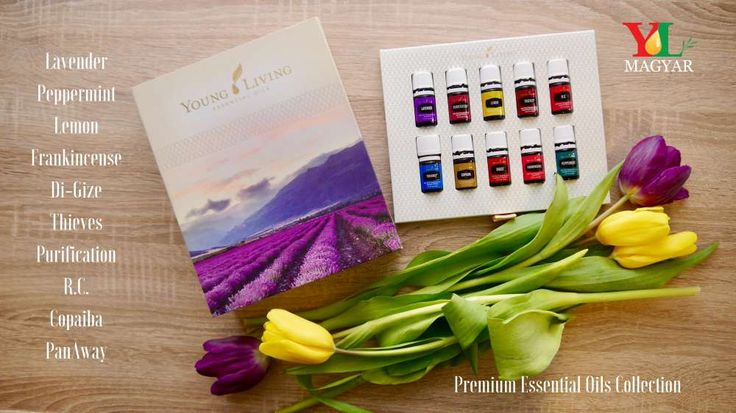 An extraordinary value that offers a comprehensive, intuitive introduction to the power of essential oils, the Premium Starter Kit is the perfect option for those who are serious about transforming their lives.Your Premium Starter Kit Includes:-Premium Essential Oils Collection- Lavender 5ml, Peppermint 5ml, Lemon 5ml, Frankincense 5ml, Di-Gize 5ml, Thieves® 5ml, Purification 5ml, R.C. 5ml, Copaiba 5ml, PanAway 5ml