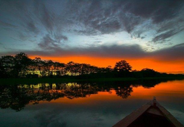 Amazon: South America - World of New7Wonders