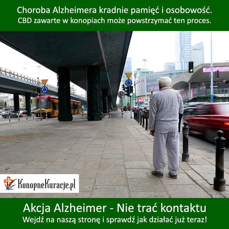 Akcja Alzheimer - nie trać kontaktu. Badania potwierdzają, że CBD spowalnia i hamuje chorobę Alzheimera. Dowiedz się więcej na konopnekuracje.pl   #cbd #olejkicbd #olejekcbd #olejcbd #konopie #konopnekuracje #konsultacje #zdrowie #warszawa #polska #alzheimer #alzheimers