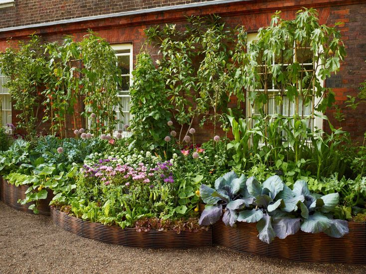 1027 Best Images About Vegetable Garden: Raised Beds On Pinterest