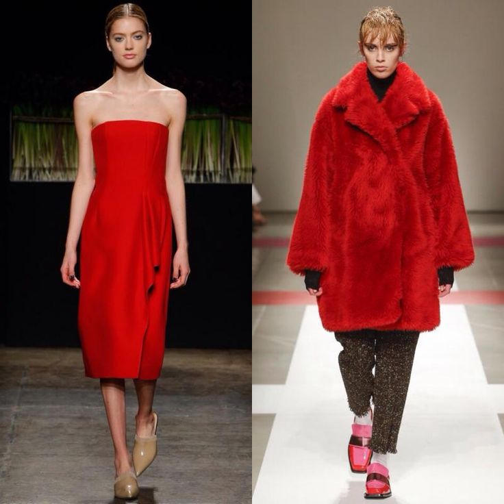 modnie-cveta-aurora-red