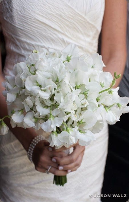 bouquet of white sweet peas -- pretty and delicate  / stoneblossom and Jason Walz photo