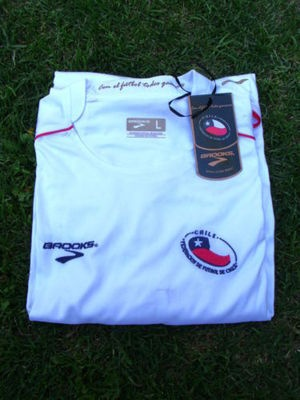 Chile 2010 World Cup Jersey