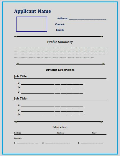 Truck Driver Resume Template 3