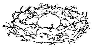 Risultati immagini per foglia di zucca disegno per bambini